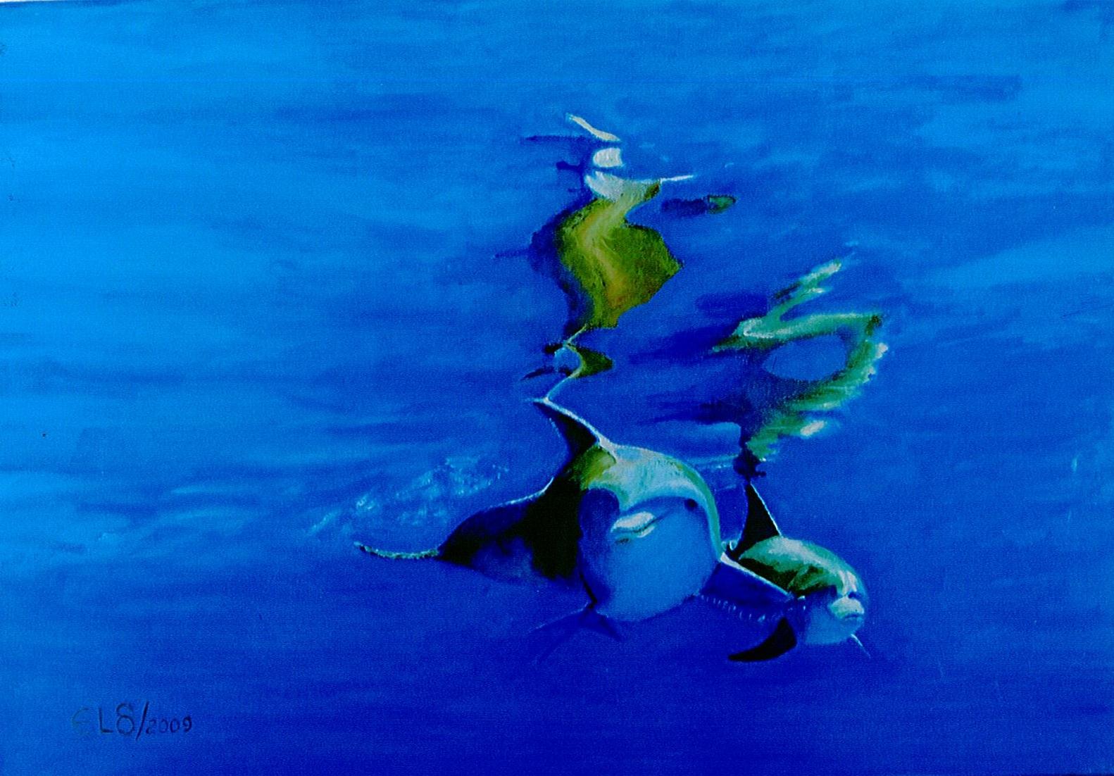 Delfines sumergidos - Celso García